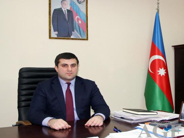 Güləş Federasiyasına yeni baş katib təyin edildi -